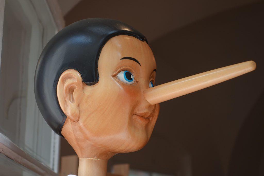 nose 鼻