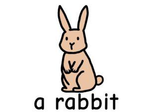 うさぎ rabbit 英語 イラスト