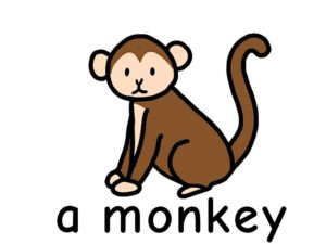 さる monkey 英語 イラスト
