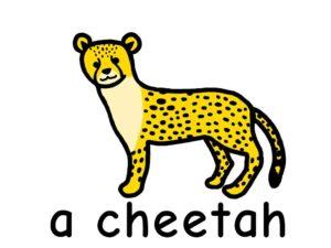 チーター cheetah 英語 イラスト