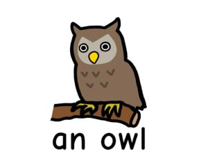 ふくろう owl 英語 イラスト