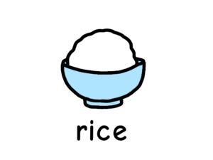 ご飯 米 rice 英語